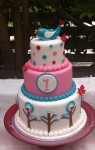 Pink & Teal Bird Cake 4 inch on 6 inch on 8 inch