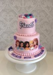 Lego Friends Pink Cake