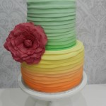 Neon Cake- Ombrey with Flower  5 inch on 7 inch