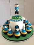 Soccer Themed Cake &  8 Cupcakes