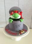 TMNT Ninja Turtle Cake